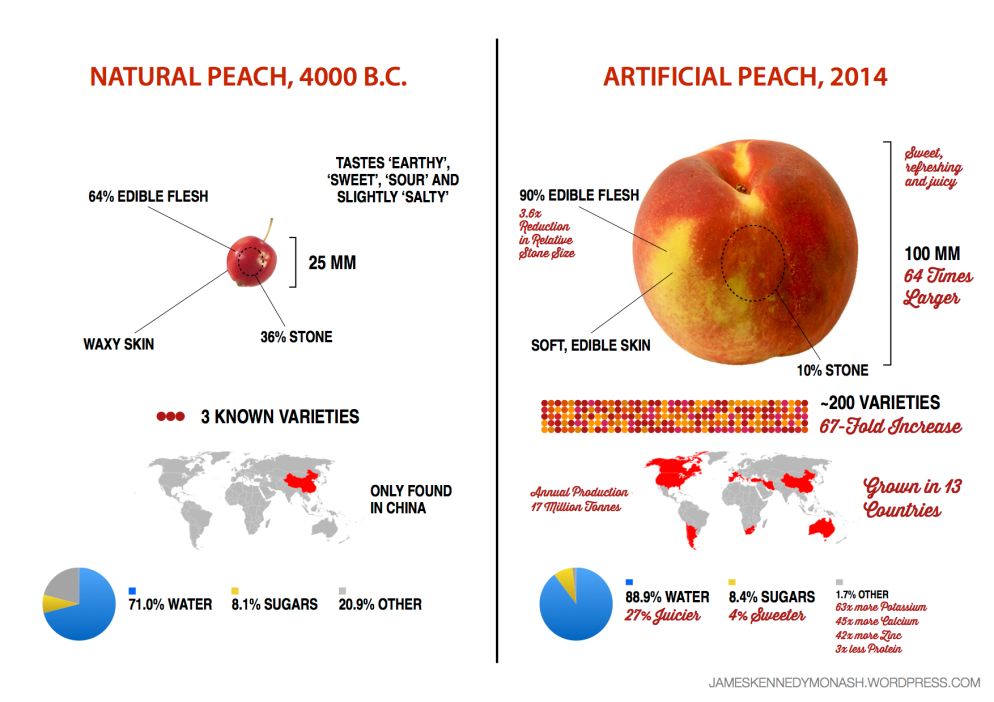 Artificial vs Natural Peach jameskennedymonash