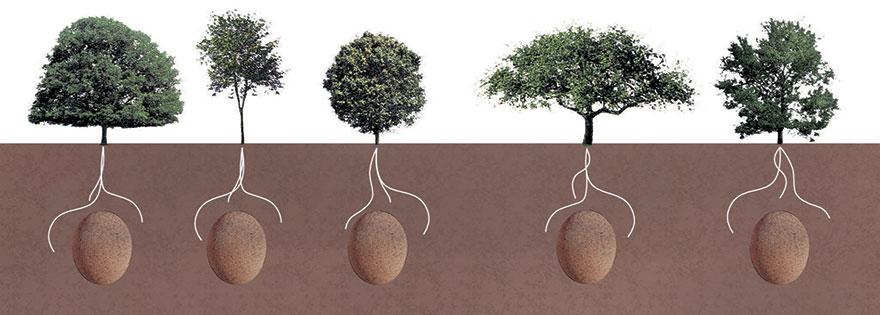 biodegradable-burial-pod-memory-forest-capsula-mundi-6